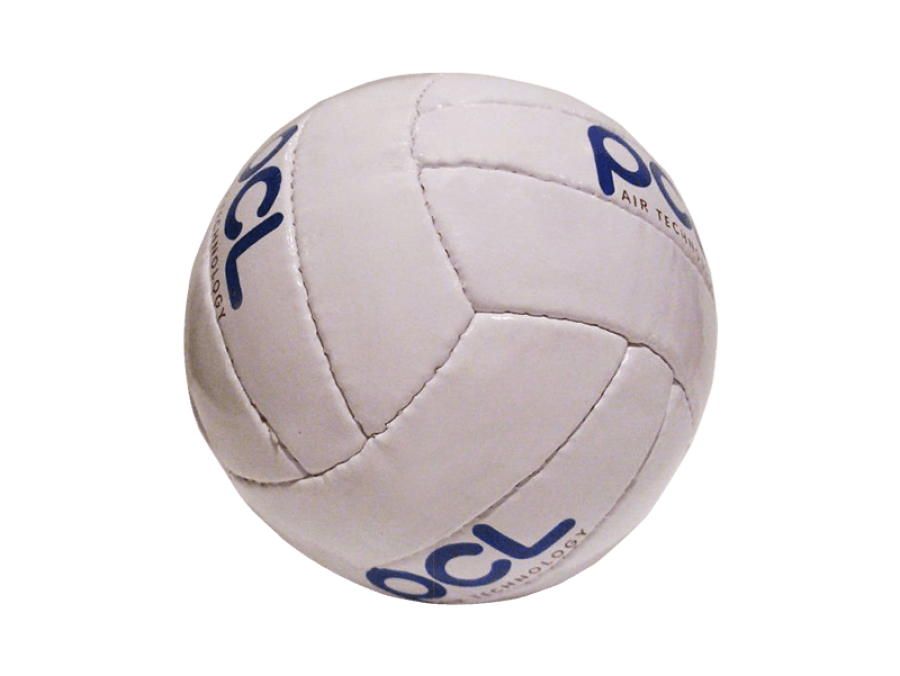 custom-volleyball